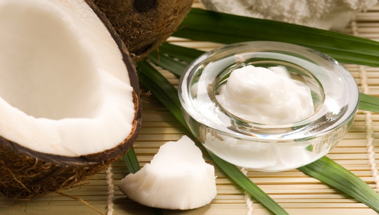 Coconut-And-Coconut-Oil-740x420