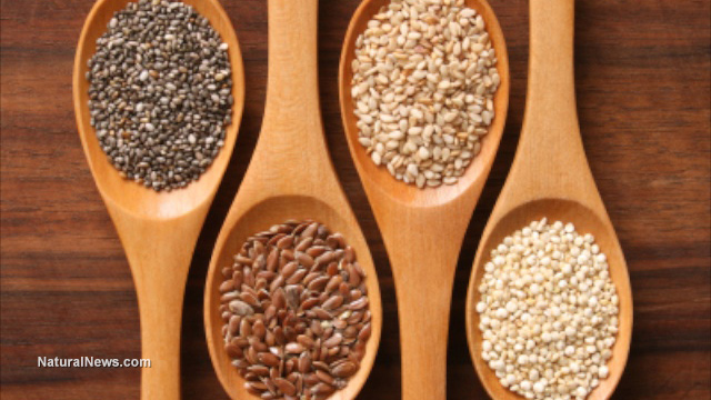 Are Chia Seeds the answer to Weight Loss?